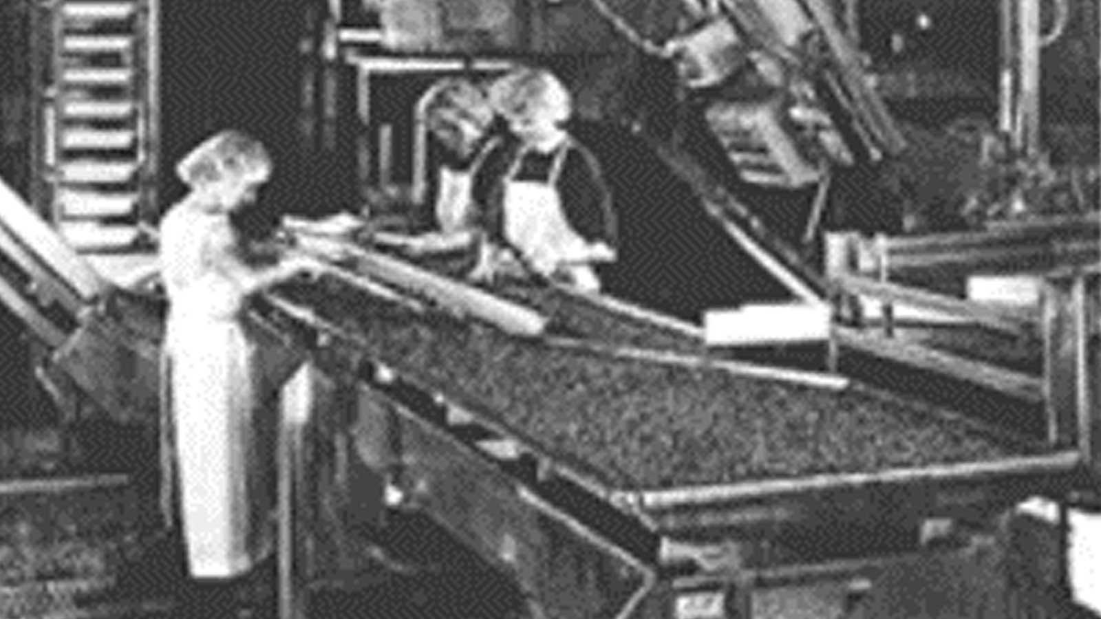 PPM Technologies - cherry plant archive photo
