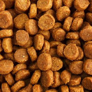 PPM Technologies - solutions and applications for pet food